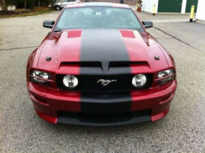 05 09 Ford Mustang Gt500 Gts Style Ram Air Functional Hood 1pc Body Kit