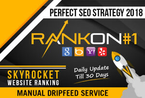 Rank Your Website On Google 30 Days Seo Backlinks Manually silver Package