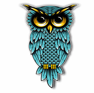 Owl Teal Blue Sticker For Cars Trucks Laptops Ipad Locker Bumper Decal 5 5 Tall
