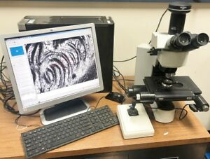 Olympus bx41m led Inspection Microscope
