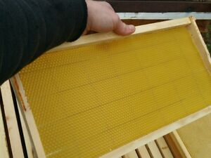 20 Assembled Bee Hive Frame Crimped Wired Wax Foundation Deep Brood Box