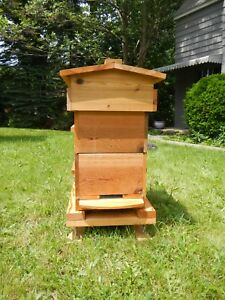 Topbar Honey Bee Hive Cedar Rectangle Aoka Farm Usa Sourced Untreated Wood