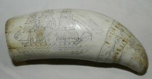 Faux Reproduction Replica Scrimshaw Whale S Tooth The Whaler Eagle Liber