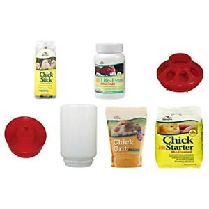 Basic Chick Food Starter Kit Medicated food Supplements Treat Feeder And
