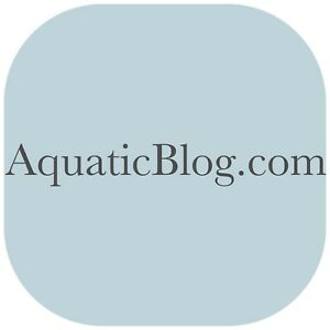 Aquaticblog com Premium Domain For Sale Aquarium Or Marine Life Or Fishing