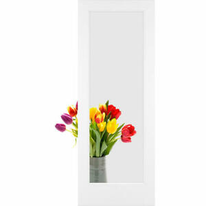 Frameport Cgl Pd 1l 8x2 Clear Glass 24 Inch By 96 Inch 1 Lite Interior Slab Pass