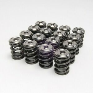 Skunk2 Alpha Valve Springs Titanium Retainer Kit For Honda K20 k24 Engine