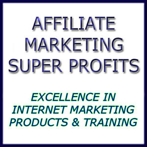 Affiliate Marketing Website For Sale Established With Aged Domain