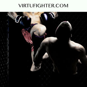 Virtufighter com Virtual Reality Domain For Sale Boxing Mma Games