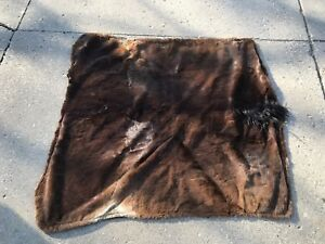 Antique 19th Century Horse Hair Horse Hide Carriage Blanket 66 X 60