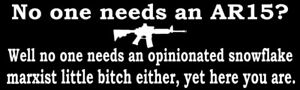 2nd Amendment Gun Decal Vinyl Bumper Sticker Firearm Funny New 10 X 3 Inches