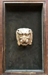 Exceptional Mid Century Italian Carved Gilt Wood Lion Head In Shadow Box Frame
