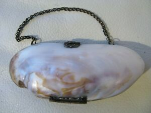 Antique Victorian Red Interior Old World Clasp Hinge Sea Shell Purse 1900s 1