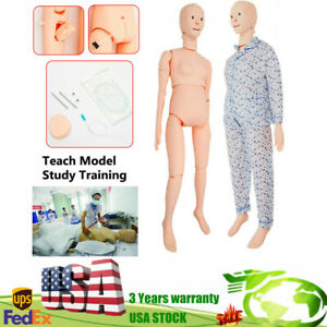 Lifesize Human Manikin Model For Nursing Medical Training Teaching Female Newest