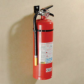 Fire Extinguisher Dry Chemical 10 Lb 1 Each