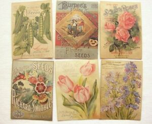 Set Of 18 Vintage Look Seed And Flower Packet Labels Victorian Primitive Grungy