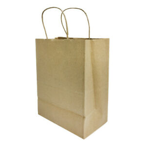 10 Pieces 8 Inch Brown Kraft Paper Gift Bags With Rope Handles For Shopping
