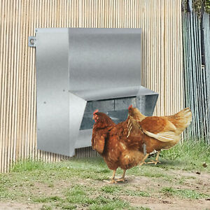 13l Chicken Feeder Wall Mounted Galvanized Steel Poultry Feeders Size For 4