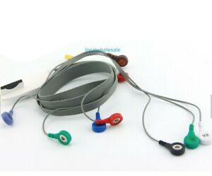 Mortara Holter Dynamic Ecg Cable10 Lead Wires Set Snap Aha