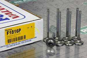 Ferrea Competition Plus Intake Valves 31mm Std B18a1 B18b1 B20b Integra Ls Crv
