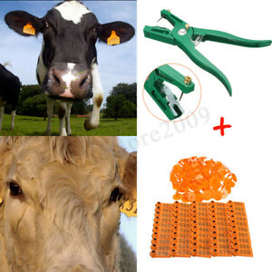 100 Numbers Livestock Pig Goat Sheep Ear Tags Id Lables 1xtag Applicator