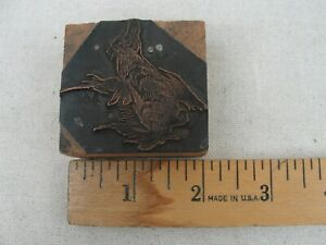 Vintage Letterpress Printers Plate rabbit Copper Wood