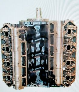 7 3 Diesel Ford Power Stroke T444e 95 02 Remanufactured Long Block Engine
