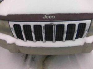 Grille Chrome Fits 99 03 Grand Cherokee 186448