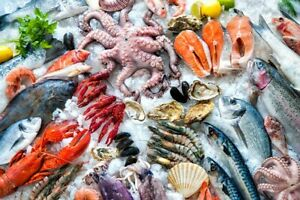 Database For Importers And Distributors fish And Seafood Over 4600 Leads