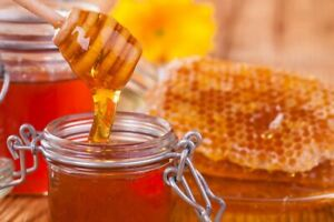 Database For Importers And Distributors honey Sugar Spreads 2 000 Leads