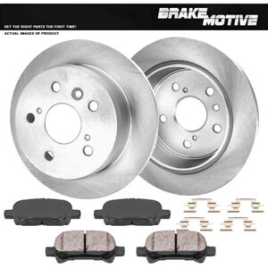 For Se Le Xle Sle Xl Xls Toyota Avalon Camry Solara Rear Rotors Ceramic Pads