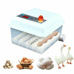 60w Egg Incubator 16 Eggs Fully Digital Automatic Hatcher For Hatching Chicken