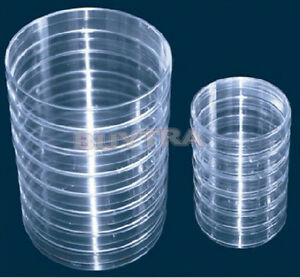 Firm Much 10x Sterile Plastic Petri Dishes For Lb Plate Bacteria 55x15mm Tsvv V6