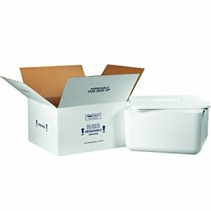 Boxes Fast Bf250c Insulated Shipping Box With Foam Container 17 X 17 X 9 M