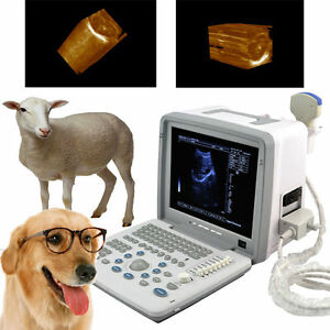 3d Veterinary Portable Full Digital Ultrasound Scanner Convex Probe With Usb