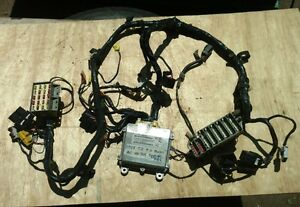 1999 Jeep Wrangler Tj 4 0 Int Wire Harness Auto Ac Hard Top Fogs No Abs 509ae
