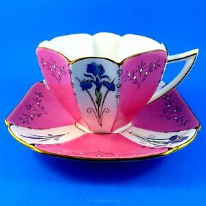 Art Deco Handpainted Iris And Pink Panels Shelley Tea Cup And Saucer Set