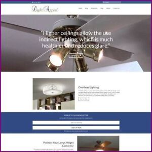 Home Lighting Website Business For Sale earn 4 465 76 A Sale free Domain