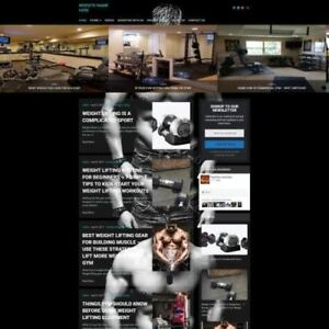 Bodybuilding Store Professionally Designed Affiliate Website For Sale Domain