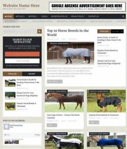 Equestrian Store Professionally Designed Affiliate Website For Sale Domain