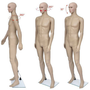 Plastic Male Dummy Mannequin Manikin Dress Form Display Clothing M 2