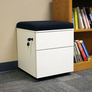 Casl Brands Rolling 2 drawer Wheeled Storage Cabinet Cushion Color Options