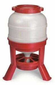 Little Giant Domefdr45 Plastic 45 Lb Dome Poultry Feeder