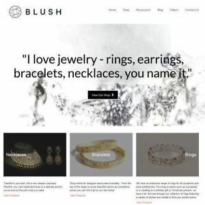 Jewelry Dropship Website Business For Sale Commission On Each Sale