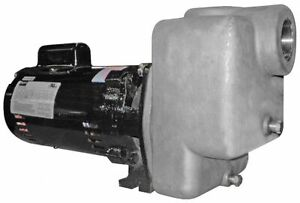 Stainless Steel 2hp Centrifugal Pump 2 Npt I o Dayton Model 4ua75 New