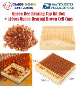 Queen Rearing Cupkit Box System Bee Catcher 110 Cell Cups Beekeeping