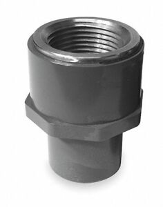 Pvc Transition Adapter Fnpt X Spg 1 Pipe Size Pipe Fitting