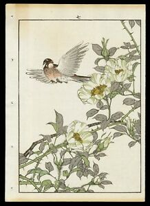 1892 Orig Japanese Woodblock Print Keinen Bird Flower