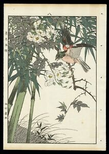 1892 Orig Japanese Woodblock Print Keinen Bird Flower Brambling