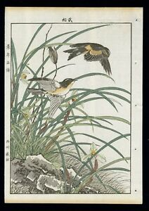 1892 Orig Japanese Woodblock Print Keinen Kacho Gafu Bird Flower Swallow